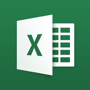 Immagine per la categoria Excel
